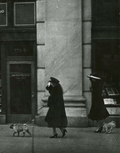 Women with Dogs against the Wind